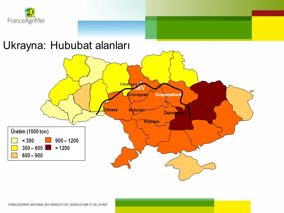 KIEV Odessa Mykolaiv Kherson Zaporizzya Dnipropetrovk Kirovograd < 300 300 – 600 600 – 900 Üretim (1000 ton) 900 – 1200 > 1200 Tcherkassy Ukrayna: Hub