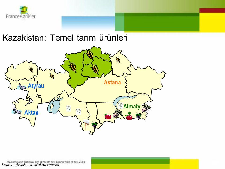 Kazakistan: Temel tarım ürünleri Aktau Astana Almaty Atyrau Sources Arvalis – Institut du végétal