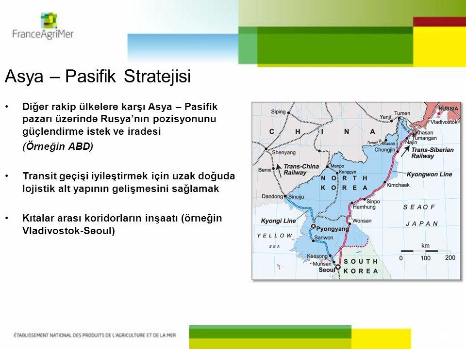 Asya – Pasifik Stratejisi •Diğer rakip ülkelere karşı Asya – Pasifik pazarı üzerinde Rusya'nın pozisyonunu güçlendirme istek ve iradesi (Örneğin ABD)