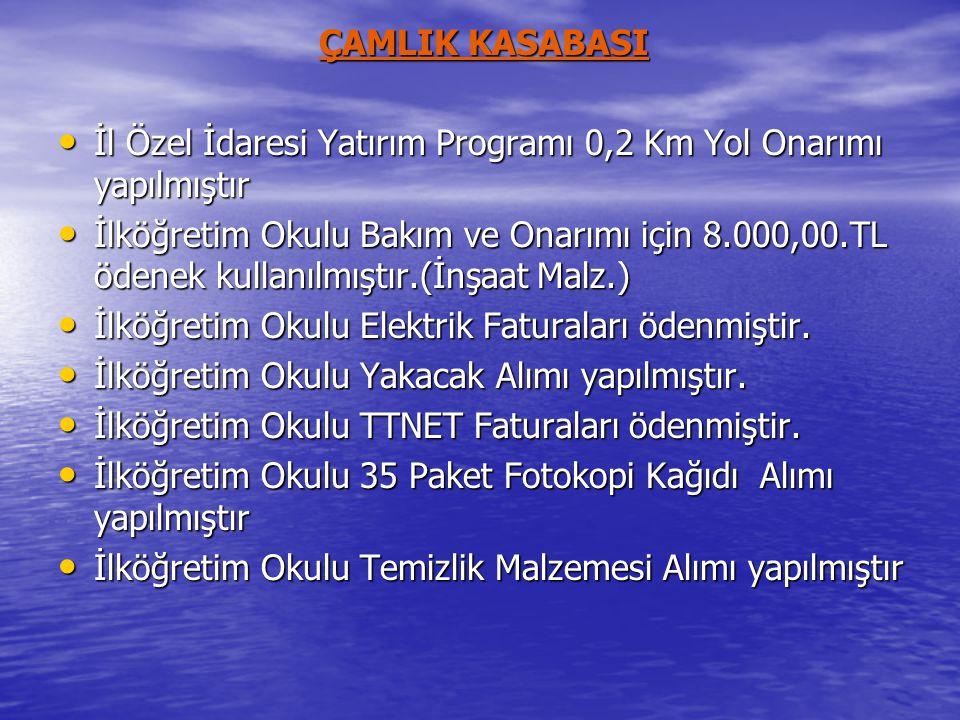ÇAMLIK KASABASI • İl Özel İdaresi Yatırım Programı 0,2 Km Yol Onarımı yapılmıştır • İlköğretim Okulu Bakım ve Onarımı için 8.000,00.TL ödenek kullanıl