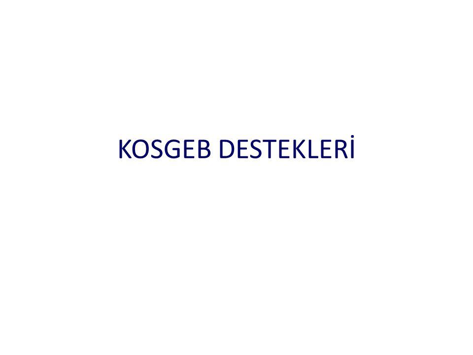 KOSGEB DESTEKLERİ
