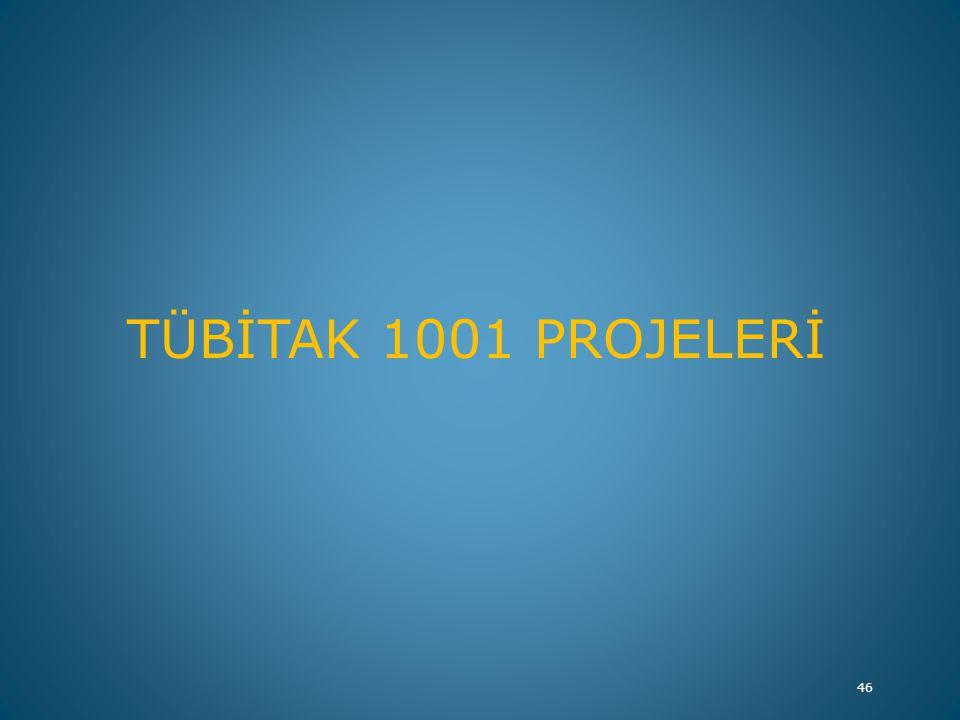 TÜBİTAK 1001 PROJELERİ 46
