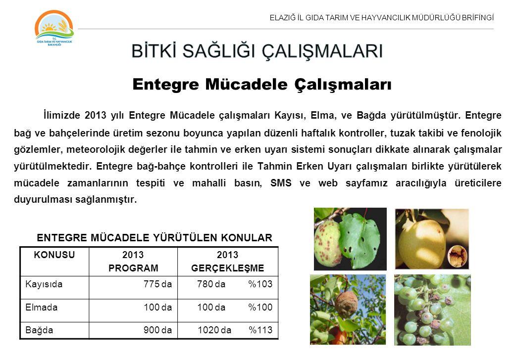 Entegre Mücadele Çalışmaları İlimizde 2013 yılı Entegre Mücadele çalışmaları Kayısı, Elma, ve Bağda yürütülmüştür. Entegre bağ ve bahçelerinde üretim