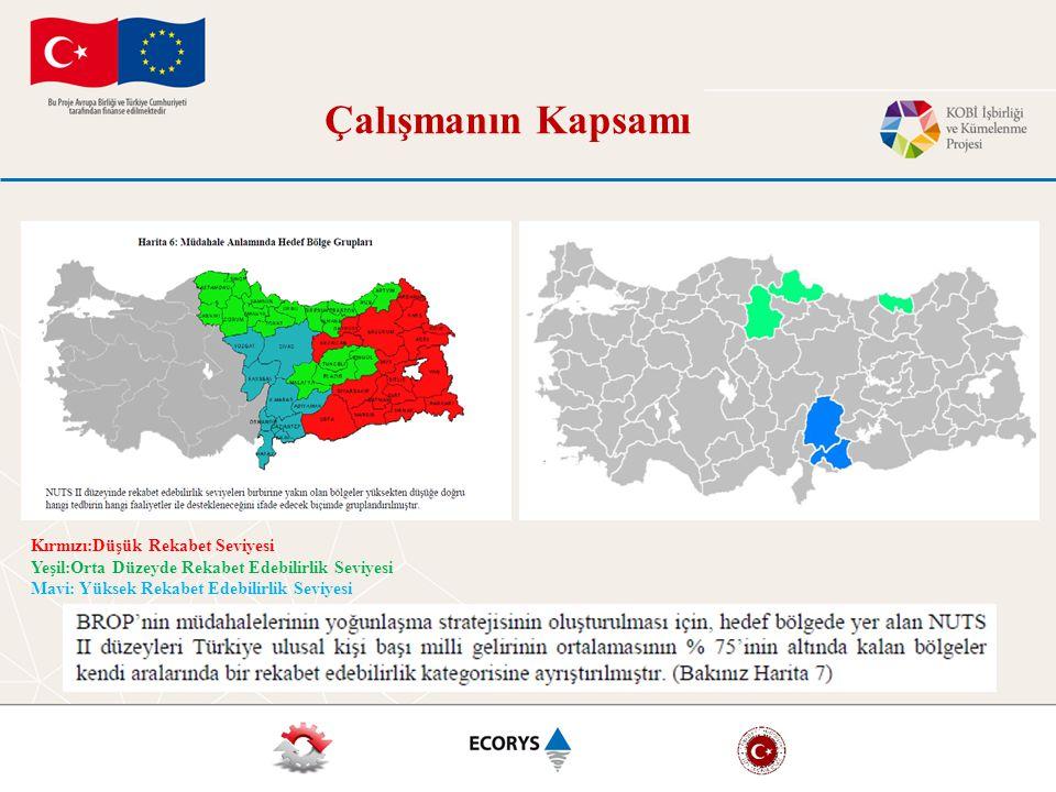 Kırmızı:Düşük Rekabet Seviyesi Yeşil:Orta Düzeyde Rekabet Edebilirlik Seviyesi Mavi: Yüksek Rekabet Edebilirlik Seviyesi Çalışmanın Kapsamı