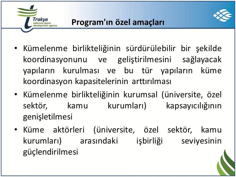 Program ın özel amaçları • Kümelenme birlikteliğinin sürdürülebilir bir şekilde koordinasyonunu ve geliştirilmesini sağlayacak yapıların kurulması ve bu tür yapıların küme koordinasyon kapasitelerinin arttırılması • Kümelenme birlikteliğinin kurumsal (üniversite, özel sektör, kamu kurumları) kapsayıcılığının genişletilmesi • Küme aktörleri (üniversite, özel sektör, kamu kurumları) arasındaki işbirliği seviyesinin güçlendirilmesi