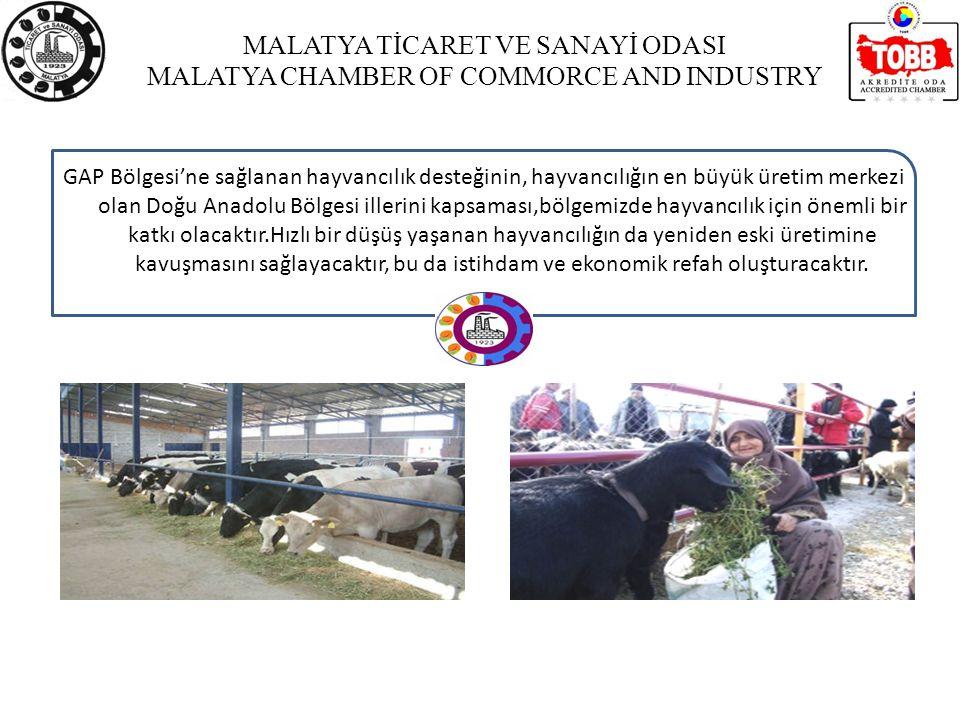 MALATYA TİCARET VE SANAYİ ODASI MALATYA CHAMBER OF COMMORCE AND INDUSTRY GAP Bölgesi'ne sağlanan hayvancılık desteğinin, hayvancılığın en büyük üretim merkezi olan Doğu Anadolu Bölgesi illerini kapsaması,bölgemizde hayvancılık için önemli bir katkı olacaktır.Hızlı bir düşüş yaşanan hayvancılığın da yeniden eski üretimine kavuşmasını sağlayacaktır, bu da istihdam ve ekonomik refah oluşturacaktır.