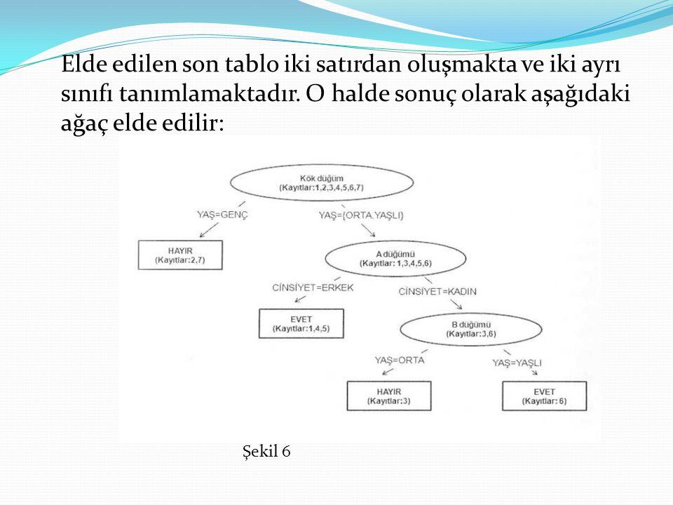 Elde edilen son tablo iki satırdan oluşmakta ve iki ayrı sınıfı tanımlamaktadır. O halde sonuç olarak aşağıdaki ağaç elde edilir: Şekil 6