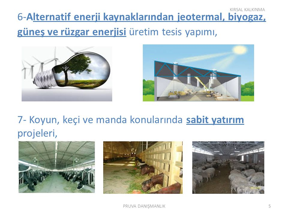 6-Alternatif enerji kaynaklarından jeotermal, biyogaz, güneş ve rüzgar enerjisi üretim tesis yapımı, 7- Koyun, keçi ve manda konularında sabit yatırım projeleri, KIRSAL KALKINMA 5PRUVA DANIŞMANLIK