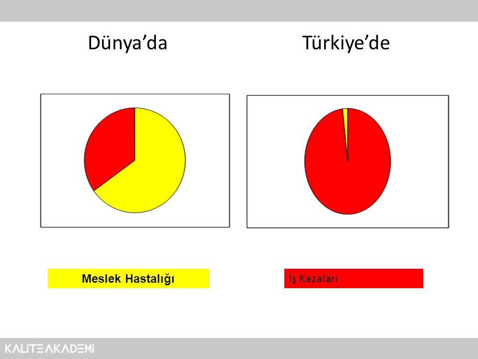 Dünya'da Türkiye'de Meslek Hastalığı İş Kazaları