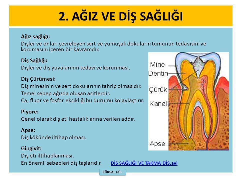 2. AĞIZ VE DİŞ SAĞLIĞI Ağız sağlığı: Dişler ve onları çevreleyen sert ve yumuşak dokuların tümünün tedavisini ve korumasını içeren bir kavramdır. Diş
