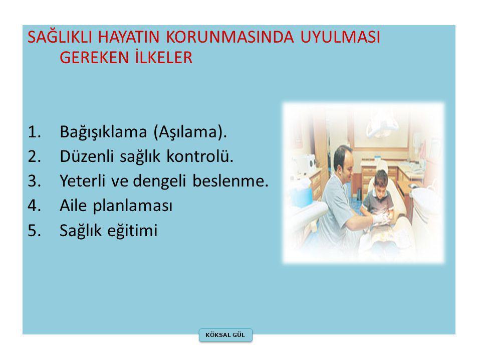 SAĞLIKLI HAYATIN KORUNMASINDA UYULMASI GEREKEN İLKELER 1.Bağışıklama (Aşılama). 2.Düzenli sağlık kontrolü. 3.Yeterli ve dengeli beslenme. 4.Aile planl