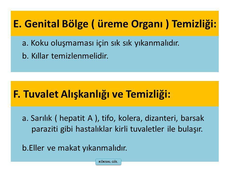 E. Genital Bölge ( üreme Organı ) Temizliği: a. Koku oluşmaması için sık sık yıkanmalıdır. b. Kıllar temizlenmelidir. a. Sarılık ( hepatit A ), tifo,