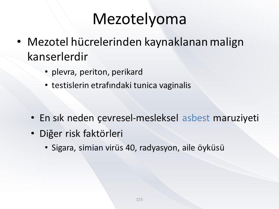 Mezotelyoma • Mezotel hücrelerinden kaynaklanan malign kanserlerdir • plevra, periton, perikard • testislerin etrafındaki tunica vaginalis • En sık neden çevresel-mesleksel asbest maruziyeti • Diğer risk faktörleri • Sigara, simian virüs 40, radyasyon, aile öyküsü 155