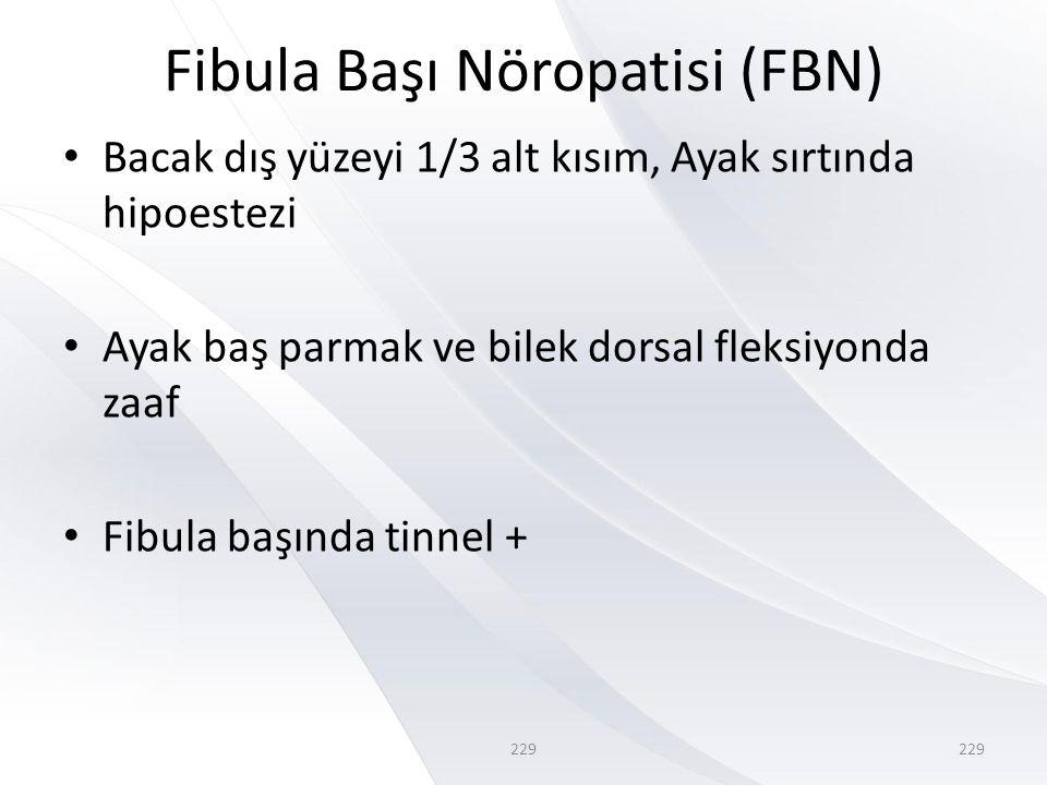 229 Fibula Başı Nöropatisi (FBN) • Bacak dış yüzeyi 1/3 alt kısım, Ayak sırtında hipoestezi • Ayak baş parmak ve bilek dorsal fleksiyonda zaaf • Fibula başında tinnel + 229