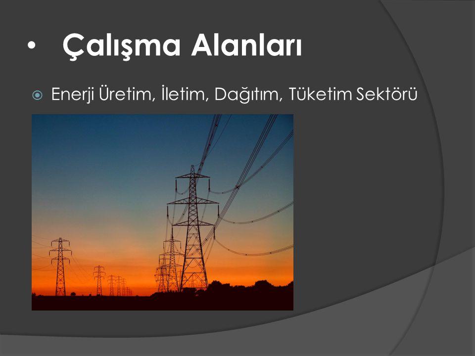 • Çalışma Alanları  Enerji Üretim, İletim, Dağıtım, Tüketim Sektörü