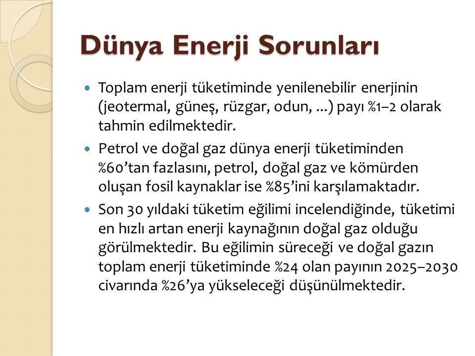 Dünya Enerji Sorunları  2004 yılı içinde tüketilen birincil enerji kaynaklarının %23'ü ABD, %29'u Türkiye ve Rusya'yla birlikte Avrupa ve Avrasya, %13,6'sı Çin, %6,5'i Rusya ve %5'i Japonya tarafından kullanılmıştır.