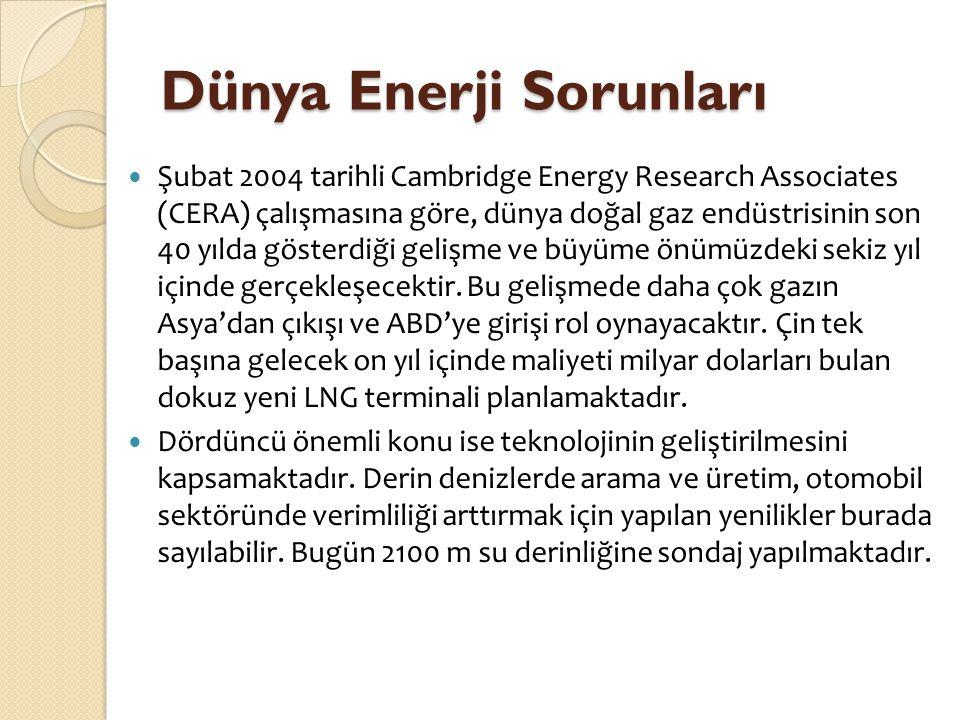 Dünya Enerji Sorunları  Şubat 2004 tarihli Cambridge Energy Research Associates (CERA) çalışmasına göre, dünya doğal gaz endüstrisinin son 40 yılda g