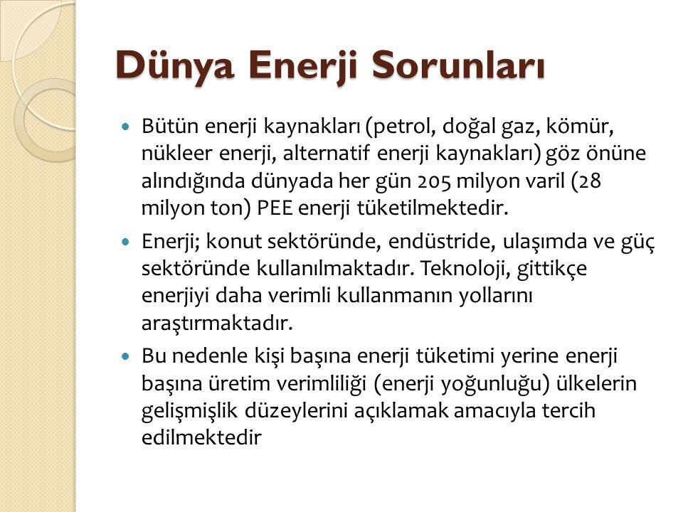 Türkiye-Yunanistan- İ talya Do ğ al Gaz Enterkonektörü (TY İ E) Güney Gaz Koridorunun hayata geçirilen ilk parçası olan TYİE, aynı zamanda Azeri gazının Güneydoğu Avrupa'ya ulaştırılması açısından da büyük önem taşımaktadır.