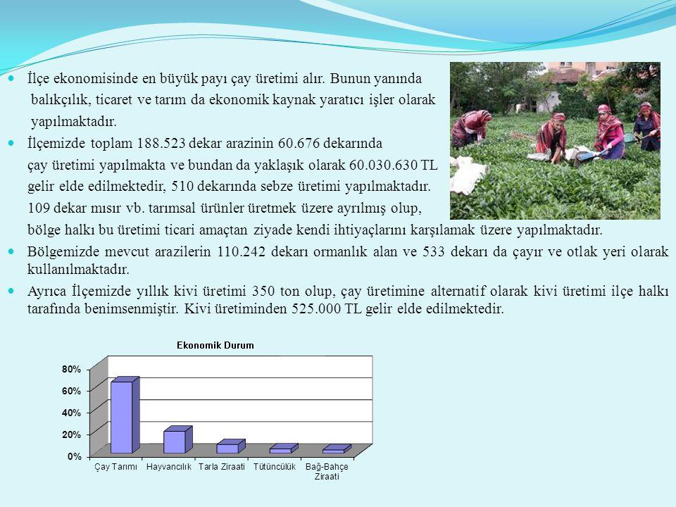 PROJELERİMİZ Üretime geçmiş kivi,elma, turunçgil, likapa (yaban mersini),Trabzon hurması,siyah kokulu üzüm v.b bahçelerde üretimin daha verimli hale getirilmesi ve yaygınlaştırılması için kurulu bahçelerde budama,hastalıklarla mücadele ile ilgili olarak bilgi verilmiş olup; İlçe Müdürlüğümüzün yönlendirmesiyle kurulacak yeni tarım arazilerinin de bölgemize uyum sorununu aşmış çaydan farklı bu ürünler tercih edilerek birim alandan elde edilecek gelirin artırılması sağlanacaktır.