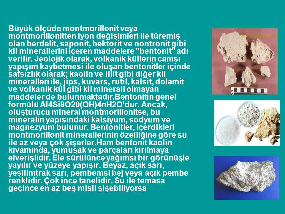 Büyük ölçüde montmorillonit veya montmorillonitten iyon değişimleri ile türemiş olan berdelit, saponit, hektorit ve nontronit gibi kil minerallerini i