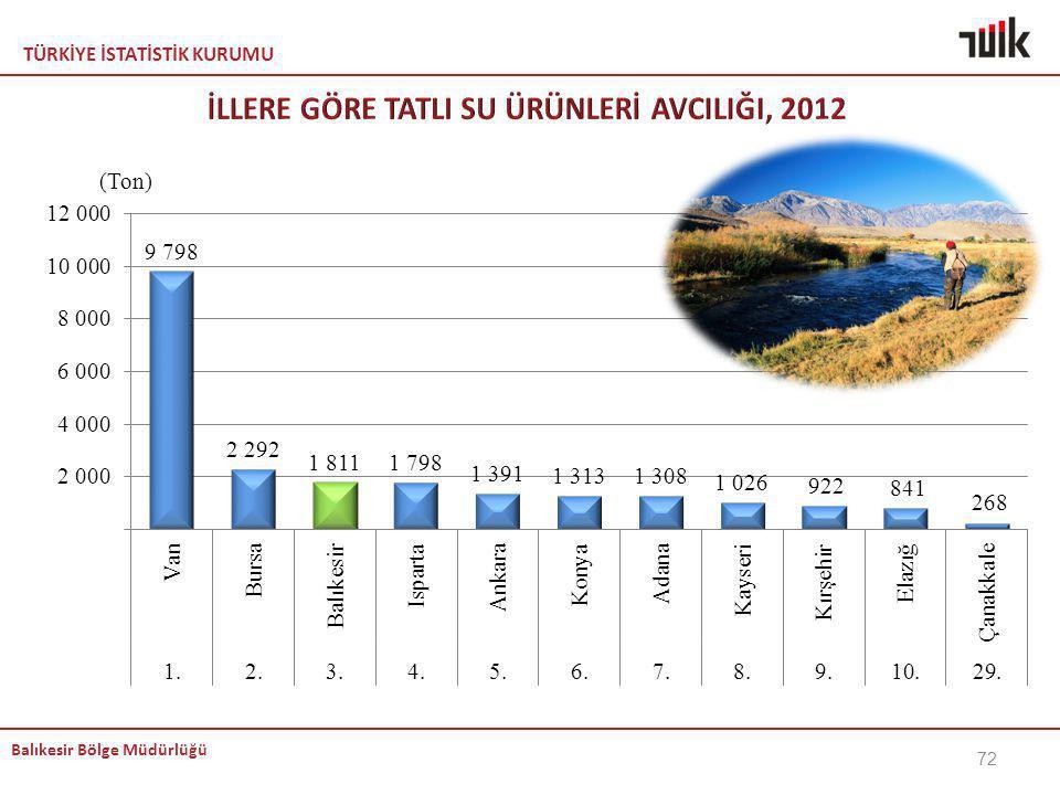 TÜRKİYE İSTATİSTİK KURUMU Balıkesir Bölge Müdürlüğü 72