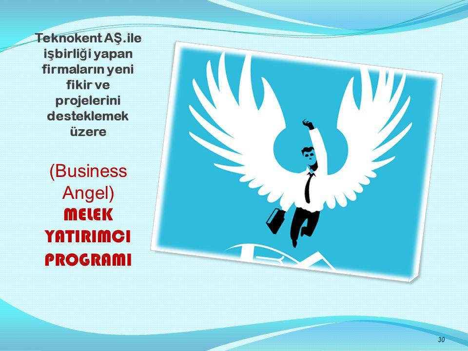 Teknokent A Ş.ile i ş birli ğ i yapan firmaların yeni fikir ve projelerini desteklemek üzere (Business Angel) MELEK YATIRIMCI PROGRAMI 30