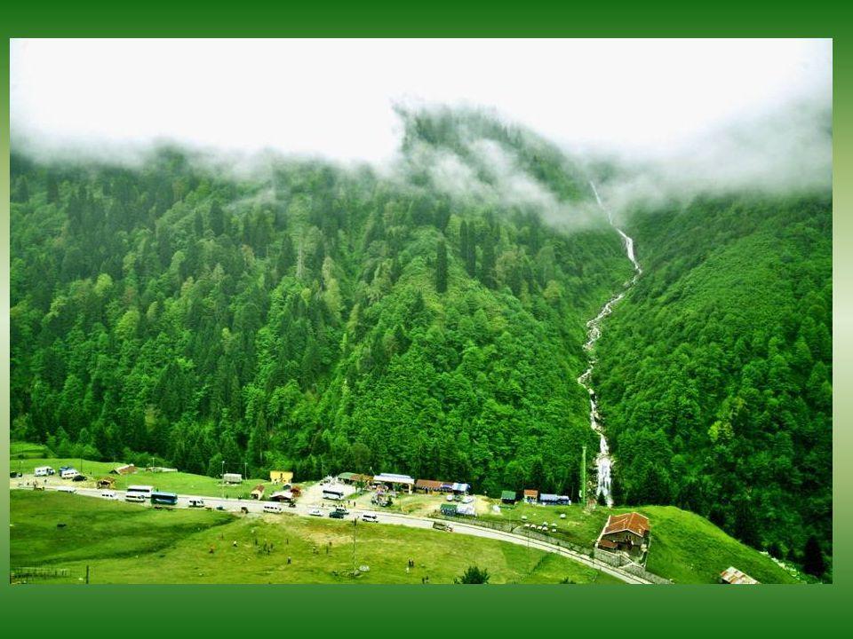 •Ayder, Çamlıhemşin ilçesinin 19 km. güneydoğusunda 1350 m.