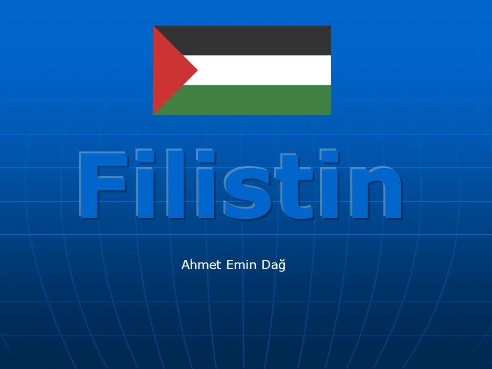 Filistin neresi.