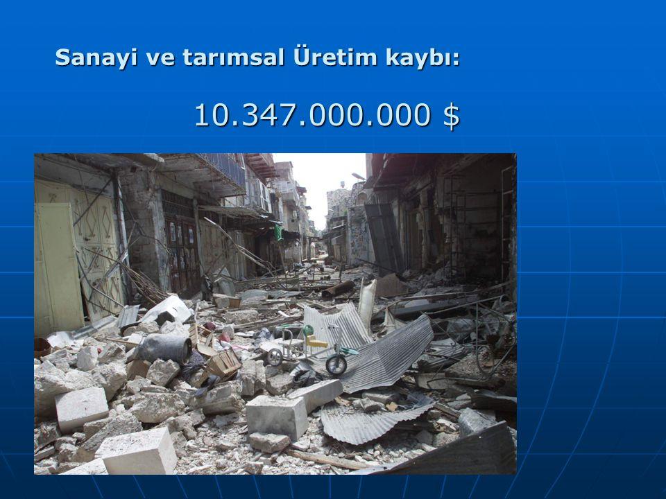 Sanayi ve tarımsal Üretim kaybı: 10.347.000.000 $