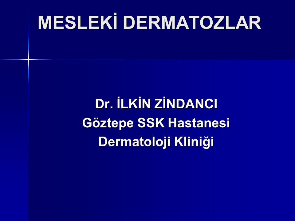 MESLEKİ DERMATOZLAR Dr. İLKİN ZİNDANCI Göztepe SSK Hastanesi Dermatoloji Kliniği