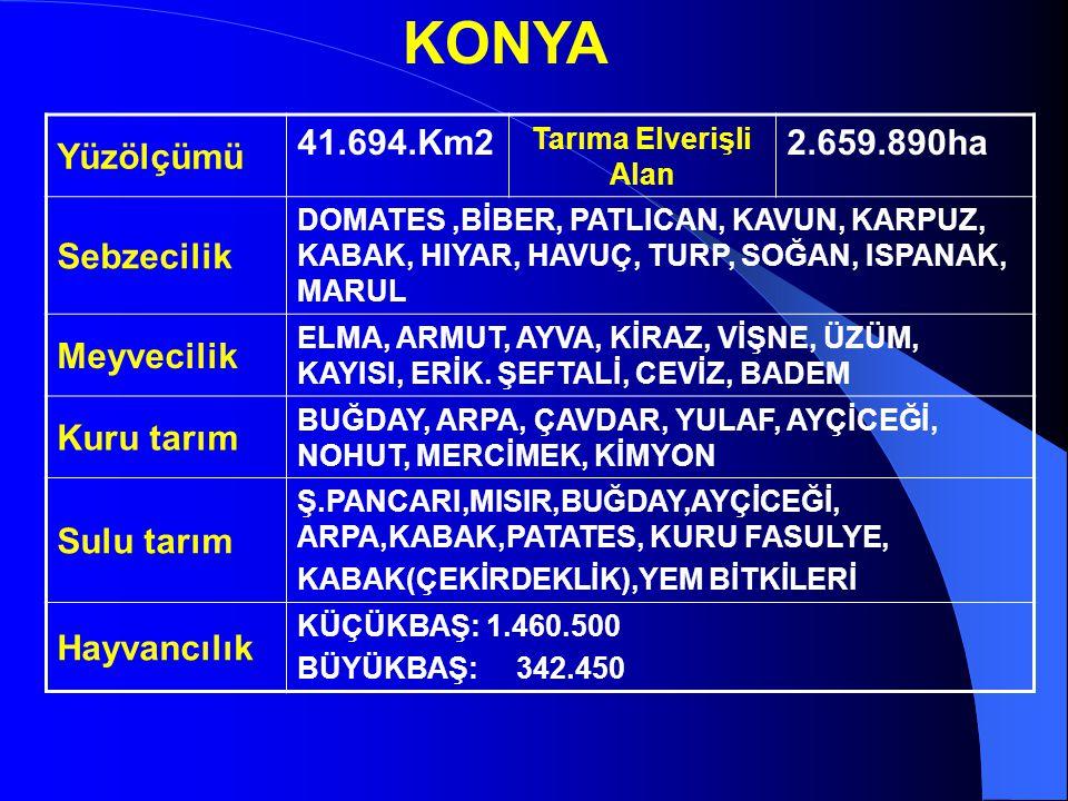 KONYA Yüzölçümü 41.694.Km2 Tarıma Elverişli Alan 2.659.890ha Sebzecilik DOMATES,BİBER, PATLICAN, KAVUN, KARPUZ, KABAK, HIYAR, HAVUÇ, TURP, SOĞAN, ISPANAK, MARUL Meyvecilik ELMA, ARMUT, AYVA, KİRAZ, VİŞNE, ÜZÜM, KAYISI, ERİK.