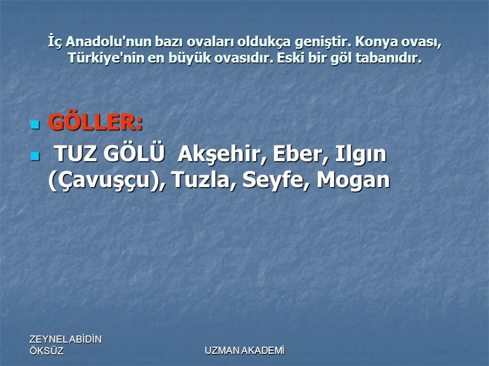 ZEYNEL ABİDİN ÖKSÜZUZMAN AKADEMİ İç Anadolu nun bazı ovaları oldukça geniştir.