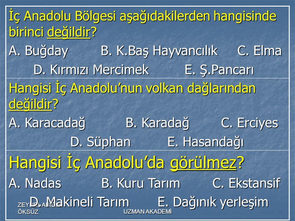 ZEYNEL ABİDİN ÖKSÜZUZMAN AKADEMİ İç Anadolu Bölgesi aşağıdakilerden hangisinde birinci değildir.