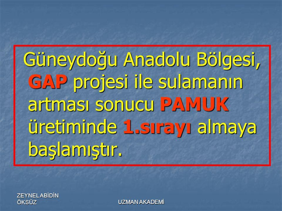 ZEYNEL ABİDİN ÖKSÜZUZMAN AKADEMİ Güneydoğu Anadolu Bölgesi, GAP projesi ile sulamanın artması sonucu PAMUK üretiminde 1.sırayı almaya başlamıştır.