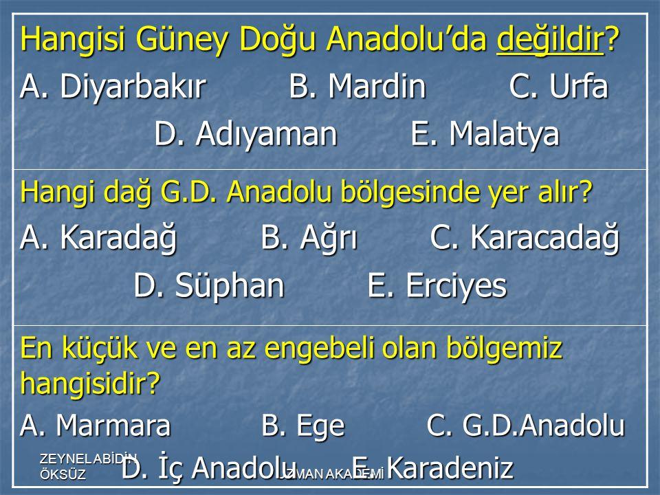 ZEYNEL ABİDİN ÖKSÜZUZMAN AKADEMİ Hangisi Güney Doğu Anadolu'da değildir.