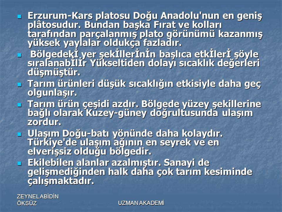 ZEYNEL ABİDİN ÖKSÜZUZMAN AKADEMİ  Erzurum-Kars platosu Doğu Anadolu nun en geniş plâtosudur.