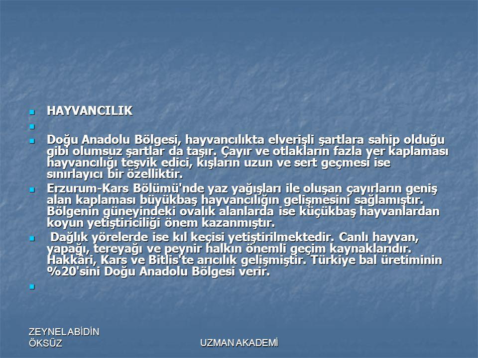 ZEYNEL ABİDİN ÖKSÜZUZMAN AKADEMİ  HAYVANCILIK   Doğu Anadolu Bölgesi, hayvancılıkta elverişli şartlara sahip olduğu gibi olumsuz şartlar da taşır.