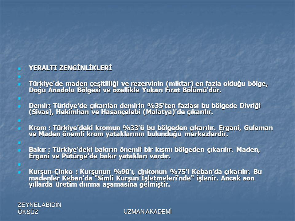 ZEYNEL ABİDİN ÖKSÜZUZMAN AKADEMİ  YERALTI ZENGİNLİKLERİ   Türkiye de maden çeşitliliği ve rezervinin (miktar) en fazla olduğu bölge, Doğu Anadolu Bölgesi ve özellikle Yukarı Fırat Bölümü dür.