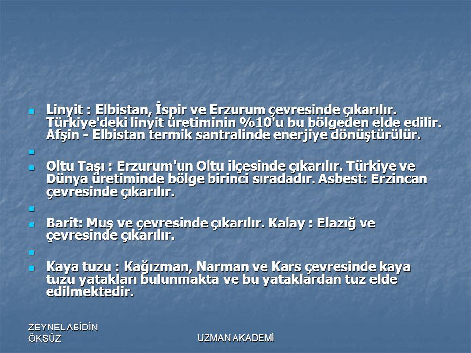 ZEYNEL ABİDİN ÖKSÜZUZMAN AKADEMİ  Linyit : Elbistan, İspir ve Erzurum çevresinde çıkarılır.