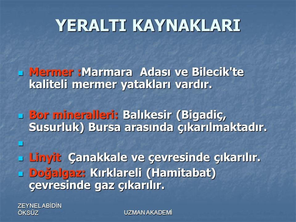 ZEYNEL ABİDİN ÖKSÜZUZMAN AKADEMİ YERALTI KAYNAKLARI  Mermer :Marmara Adası ve Bilecik te kaliteli mermer yatakları vardır.