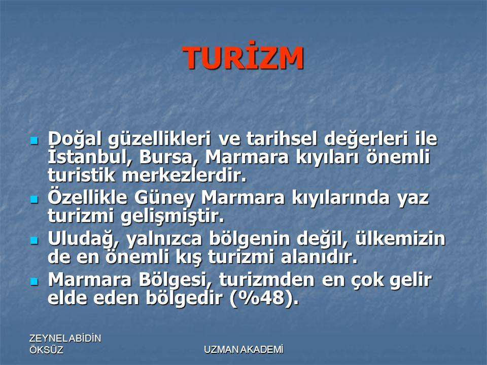 ZEYNEL ABİDİN ÖKSÜZUZMAN AKADEMİ TURİZM  Doğal güzellikleri ve tarihsel değerleri ile İstanbul, Bursa, Marmara kıyıları önemli turistik merkezlerdir.