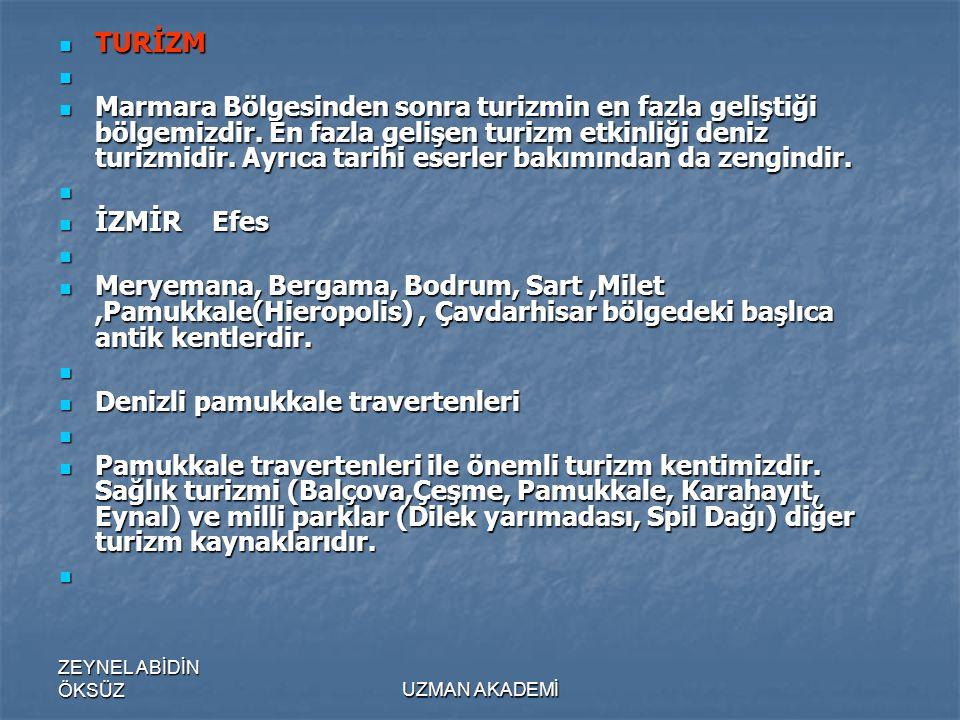 ZEYNEL ABİDİN ÖKSÜZUZMAN AKADEMİ  TURİZM   Marmara Bölgesinden sonra turizmin en fazla geliştiği bölgemizdir.
