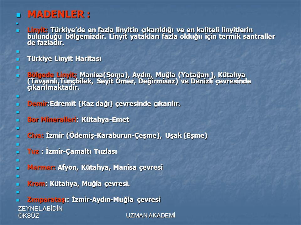 ZEYNEL ABİDİN ÖKSÜZUZMAN AKADEMİ  MADENLER :   Linyit: Türkiye'de en fazla linyitin çıkarıldığı ve en kaliteli linyitlerin bulunduğu bölgemizdir.