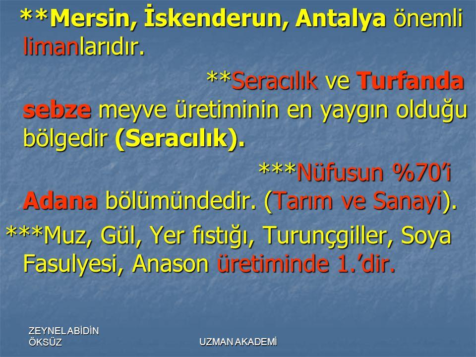 ZEYNEL ABİDİN ÖKSÜZUZMAN AKADEMİ **Mersin, İskenderun, Antalya önemli limanlarıdır.