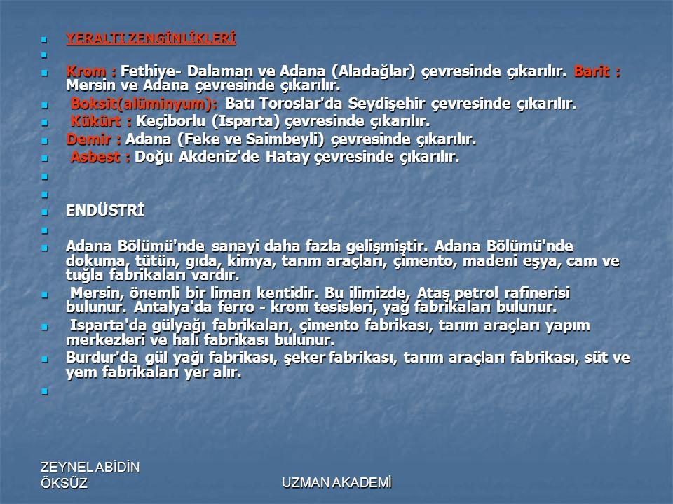 ZEYNEL ABİDİN ÖKSÜZUZMAN AKADEMİ  YERALTI ZENGİNLİKLERİ   Krom : Fethiye- Dalaman ve Adana (Aladağlar) çevresinde çıkarılır.