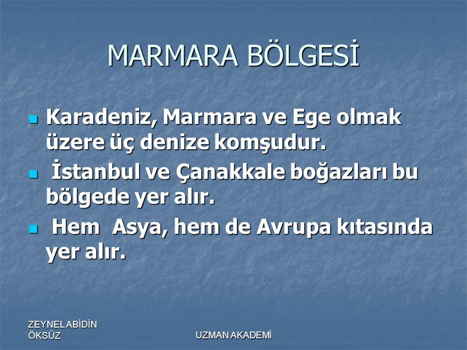 ZEYNEL ABİDİN ÖKSÜZUZMAN AKADEMİ MARMARA BÖLGESİ  Karadeniz, Marmara ve Ege olmak üzere üç denize komşudur.