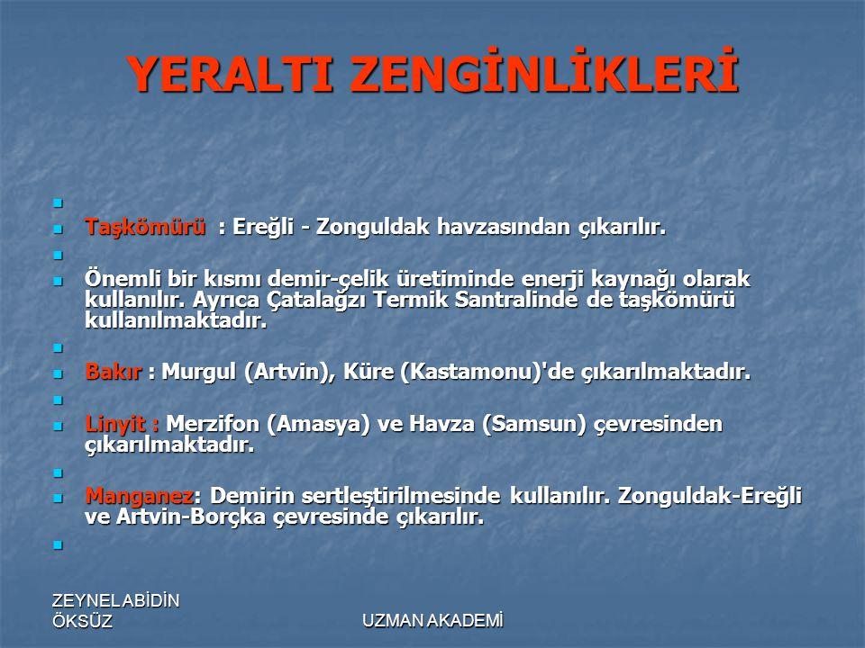 ZEYNEL ABİDİN ÖKSÜZUZMAN AKADEMİ YERALTI ZENGİNLİKLERİ   Taşkömürü : Ereğli - Zonguldak havzasından çıkarılır.