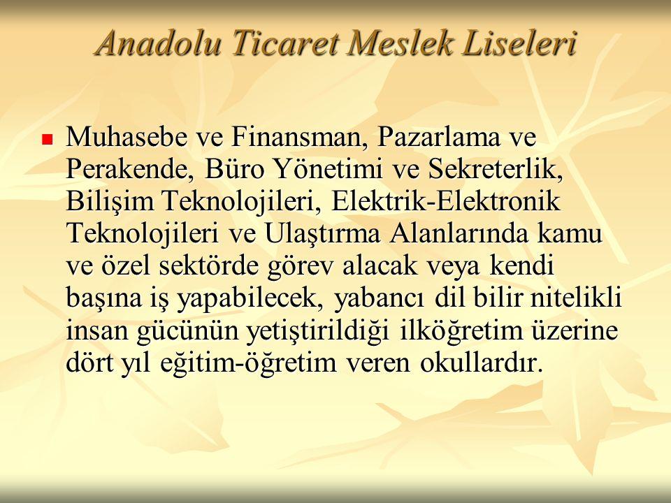 Anadolu Ticaret Meslek Liseleri  Muhasebe ve Finansman, Pazarlama ve Perakende, Büro Yönetimi ve Sekreterlik, Bilişim Teknolojileri, Elektrik-Elektro