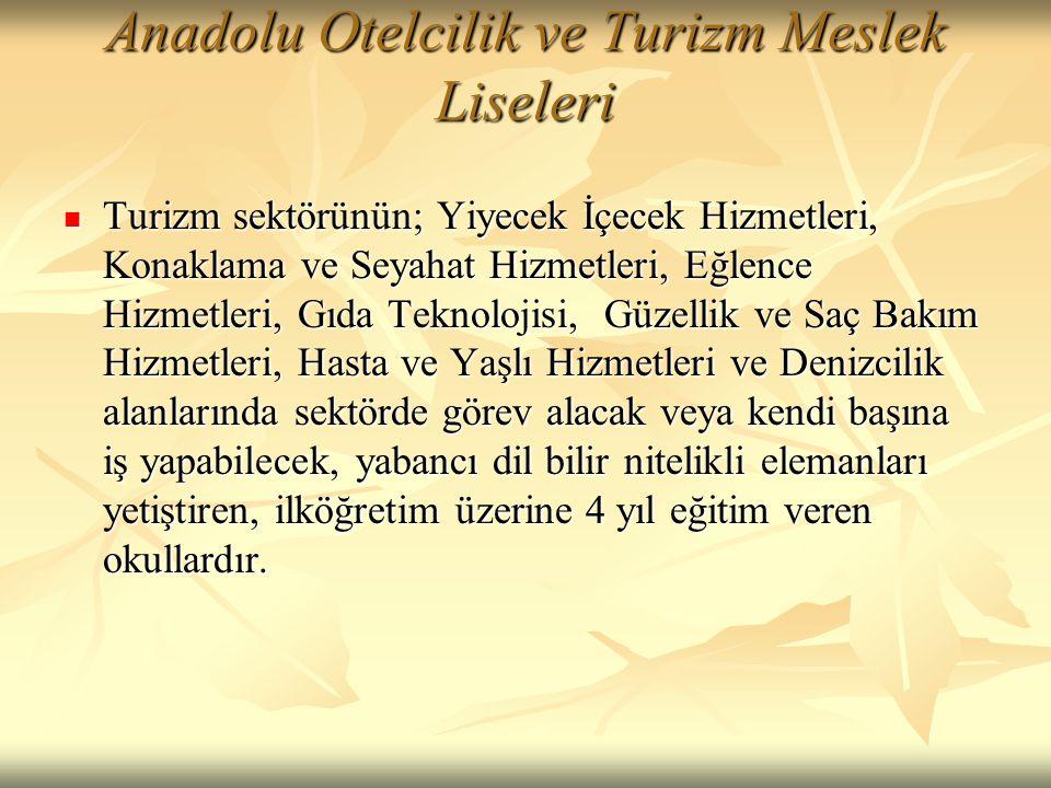 Anadolu Otelcilik ve Turizm Meslek Liseleri  Turizm sektörünün; Yiyecek İçecek Hizmetleri, Konaklama ve Seyahat Hizmetleri, Eğlence Hizmetleri, Gıda