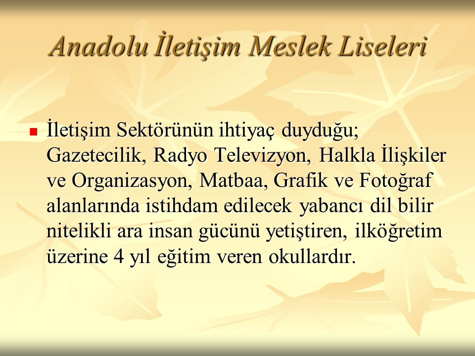 Anadolu İletişim Meslek Liseleri  İletişim Sektörünün ihtiyaç duyduğu; Gazetecilik, Radyo Televizyon, Halkla İlişkiler ve Organizasyon, Matbaa, Grafi